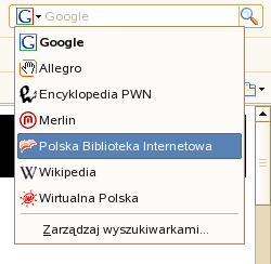 Pasek wyszukiwania